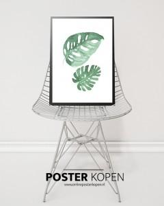 Botanic-poster-bladen-groen