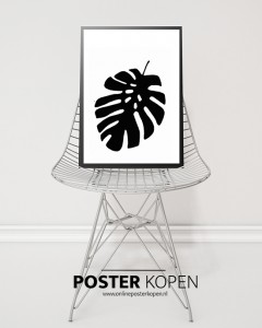 botanic-kamerplant-poster