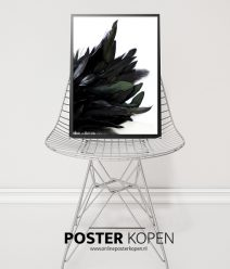 zwanen- vleugel -poster