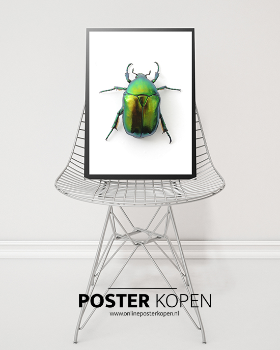 botanische posters l posters bestellen l online poster kopen. Black Bedroom Furniture Sets. Home Design Ideas