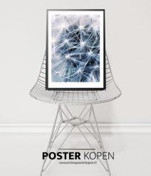 Botanische Posters l Botanische prints l Online Poster Kopen