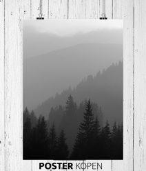 tuinposter-natuurposter-onlineposterkopen-interieurspostershop
