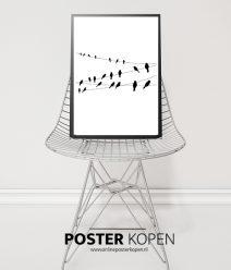vogelposter-dierenposter-onlineposterkopen