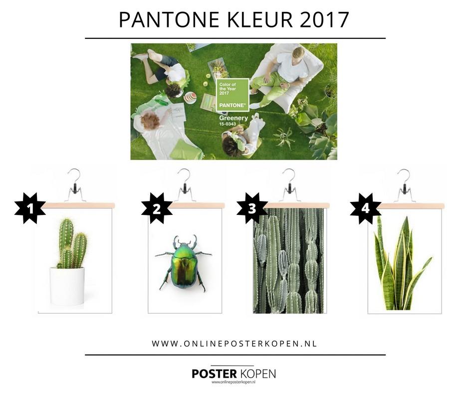 Greenery de nieuwe PANTONE  kleur voor 2017