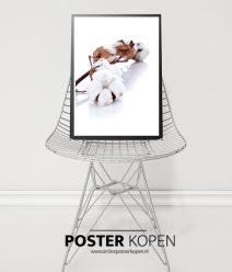 Bloemen Posters bloemen prints l Online Poster Kopen
