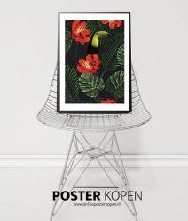 Toekan in paradice-poster-onlineposterkopen-desenio