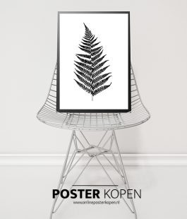 Poster Urban Jungle l Sale l Online Poster Kopen