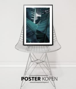 Urban-jungle-poster-onlineposterkopen