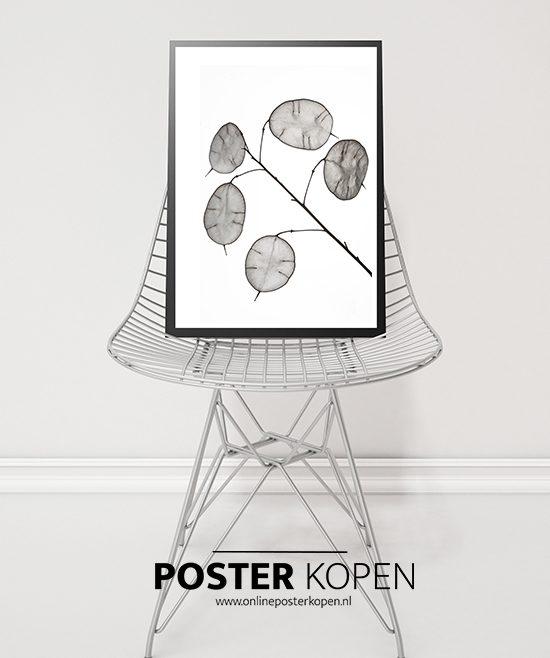 Botanische-poster-bloem-onlineposterkopen