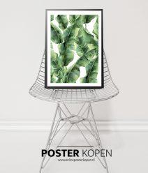 Botanische poster l Botanische prints l Online Poster Kopen