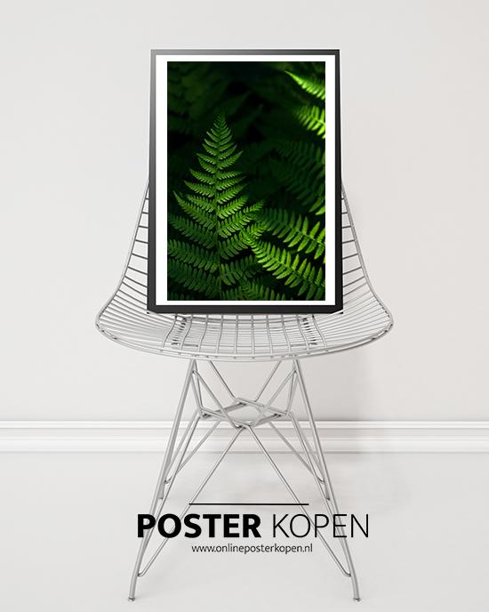 Posters l Botanische prints l Online Poster Kopen