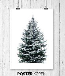 Kerstboom tuin posters l grootste collectie l Online Poster Kopen