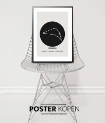 poster sterrenbeeld-steenbok-onlineposterkopen