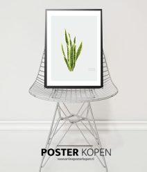 poster-botanischgroen-onlineposterkopen