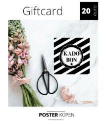 giftcard 20 euro-onlineposterkopen
