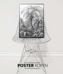 Ernst Haeckel-onlineposterkopen