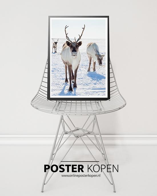 kerstposter-rendieren-poster-onlineposterkopen