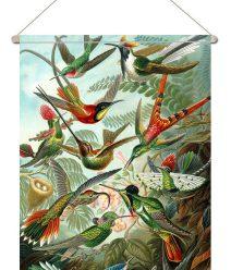 textielposter-Kolibries door Ernst Haeckel-onlineposterkopen