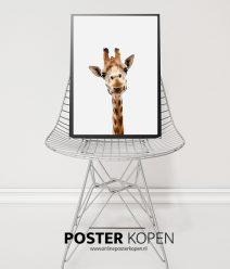 giraffe-poster-onlineposterkopen
