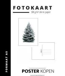 Fotokaart kerstboom - Postkaart - mini poster