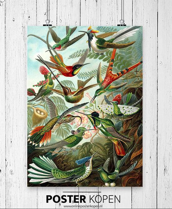 Tuinposters l poster voor in de tuin l buiten poster - Online Poster Kopen